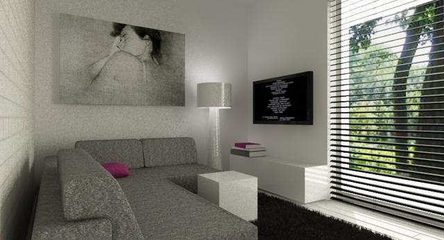 Nowoczesne minimalistyczne mieszkanie w klimacie loftu